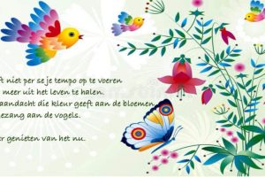 Mindfulness coaching en training LVG en bij Autisme
