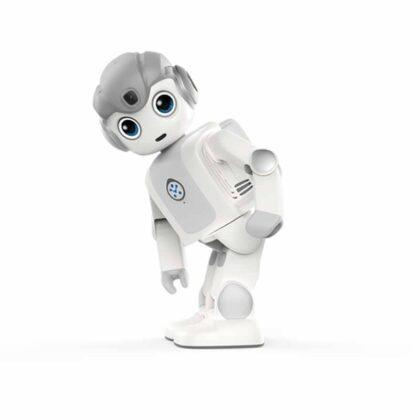 Maatje Robot